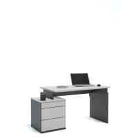 Письменный стол Flex Plus 125 Young Grey Dark