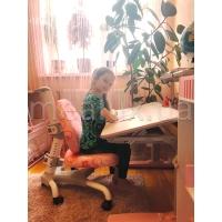 Детское ортопедическое кресло Mealux Champion